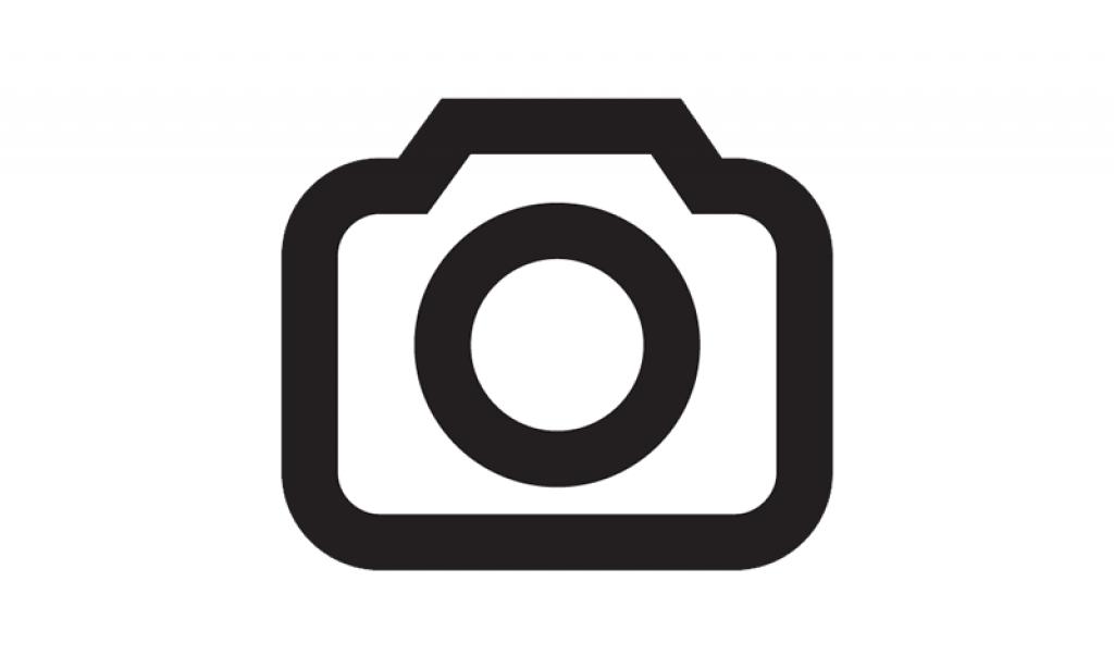 Autodesk Maya 2018 on Fedora 29/30 Image 3
